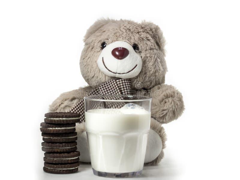 Время закуски с медведем стоковые фотографии rf