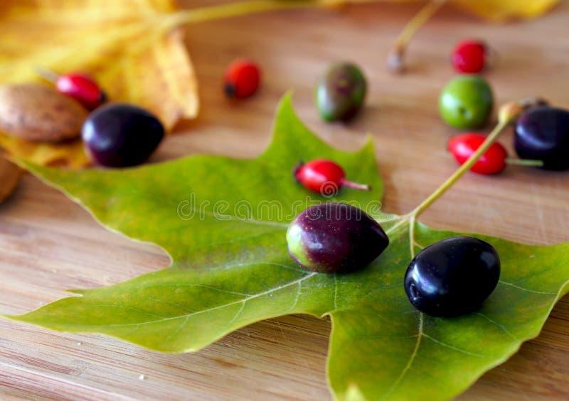 Время осени в Испании: натюрморт с кленовым листом, оливками и ягодами briar стоковое изображение
