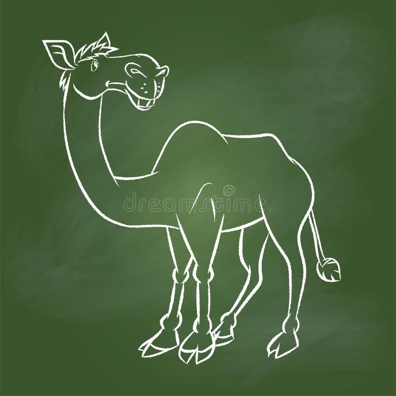 Вручите верблюда чертежа на зеленой доске - Vector иллюстрация иллюстрация вектора