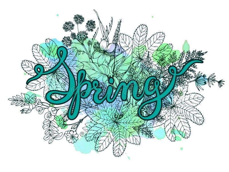 Вручите весну слова литерности с травами нарисованными рукой иллюстрация вектора