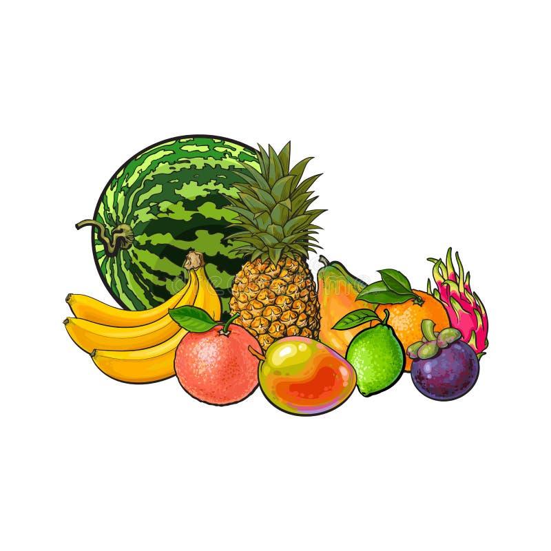 Вручите вычерченное, комплект стиля эскиза экзотических, тропических плодоовощей бесплатная иллюстрация