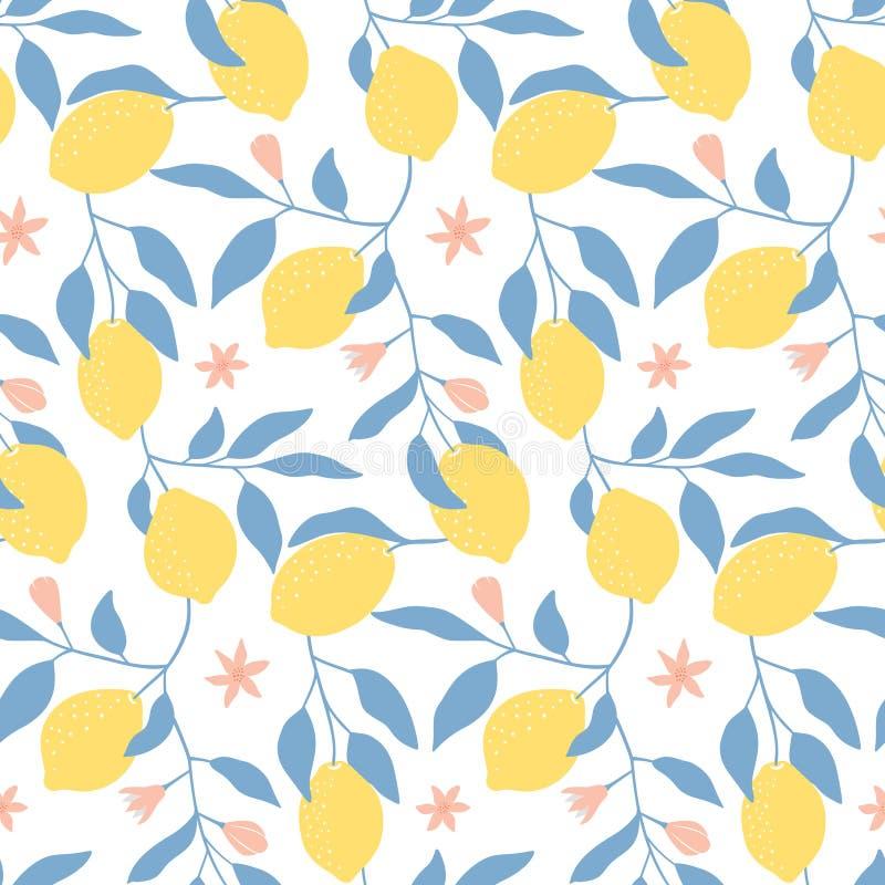 Вручите вычерченную безшовную картину с свежими лимонами, листьями и цветками иллюстрация штока