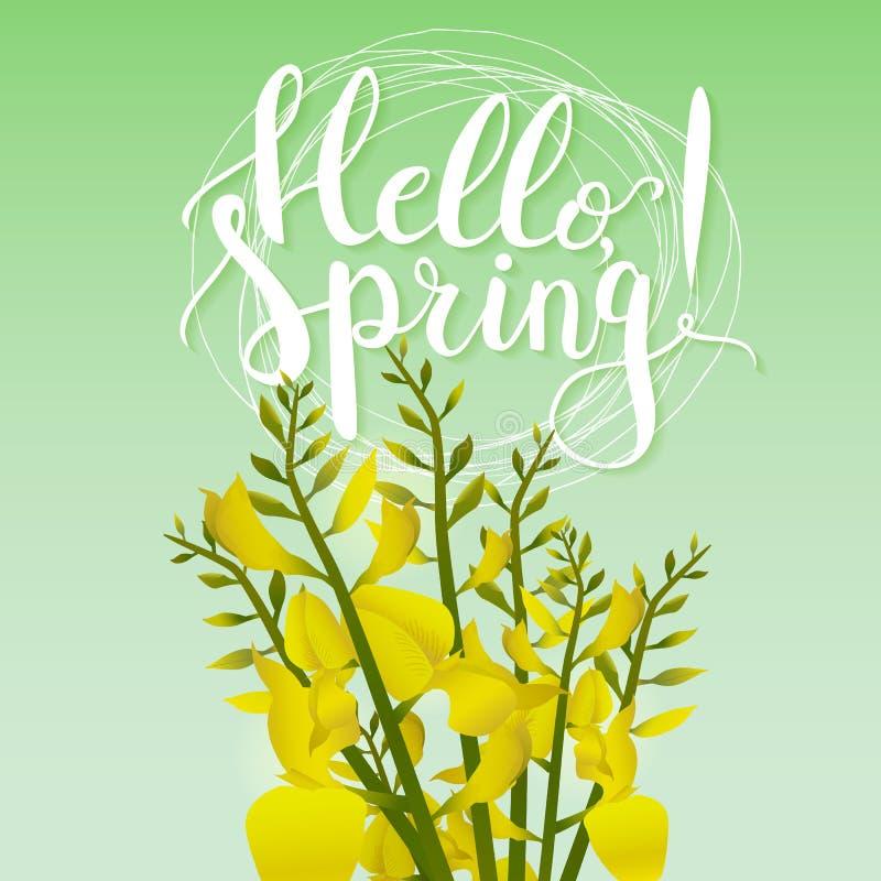 Вручите вычерченную весну фразы литерности оформления здравствуйте! на зеленой предпосылке с зацветая цветками бесплатная иллюстрация