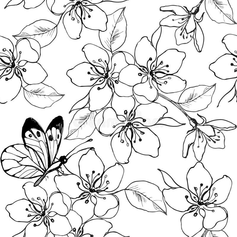 Вручите вычерченную ветвь вишневого цвета, груши, яблони с бабочкой Vector безшовная картина цветков весны для анти- stres бесплатная иллюстрация