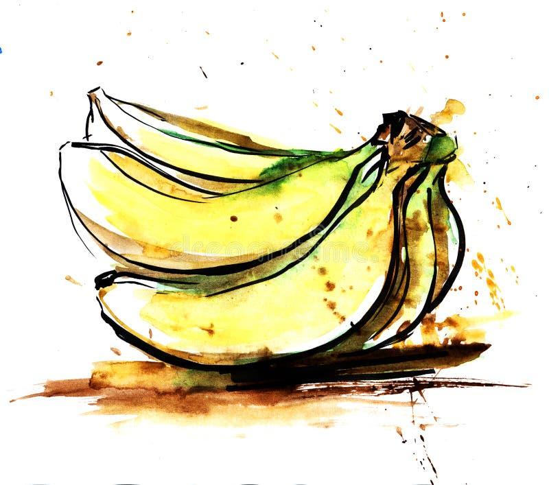 Вручите вычерченную реальную акварель и покройте краской эскиз желтого завтрак-обеда ба иллюстрация штока