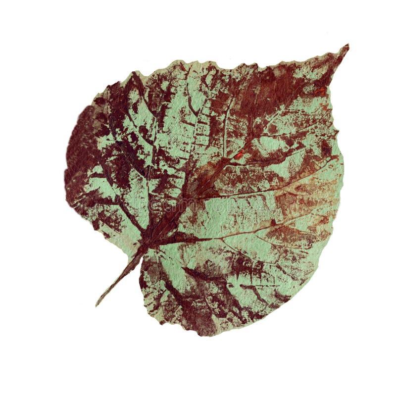 Вручите вычерченные графические листья зеленого цвета акварели изолированные на белизне, лист отпечатка штемпеля, карточках, знам иллюстрация вектора