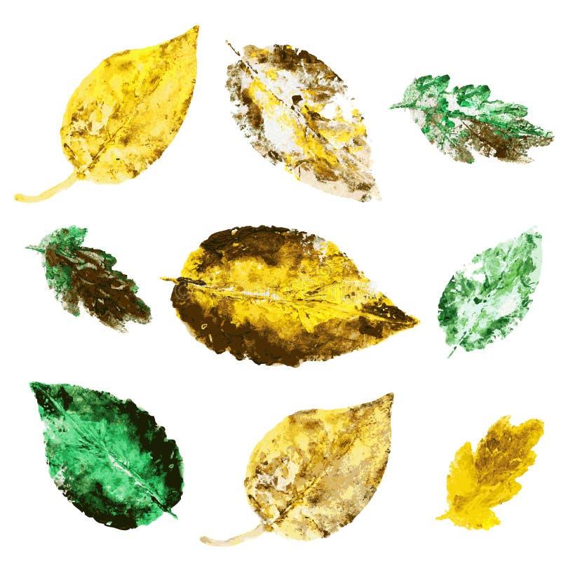 Вручите вычерченные листья изолированные на белизне, лист зеленого цвета акварели векторной графики отпечатка штемпеля, карточки, бесплатная иллюстрация