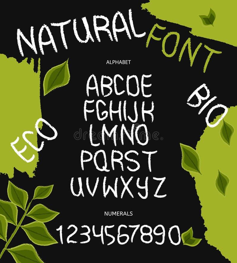 Вручите вычерченный алфавит вектора с номерами для дизайна зеленых продуктов eco, пользы ярлыков и продуктов питания логотипов V иллюстрация вектора