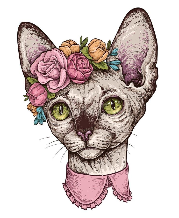 Вручите вычерченный портрет милого кота сфинкса с венком на голове Иллюстрация вектора изолированная на белизне иллюстрация штока