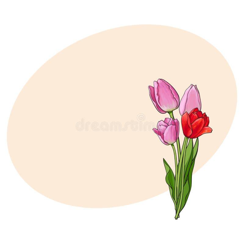 Вручите вычерченный пук цветка тюльпана 3 взглядов со стороны розового бесплатная иллюстрация