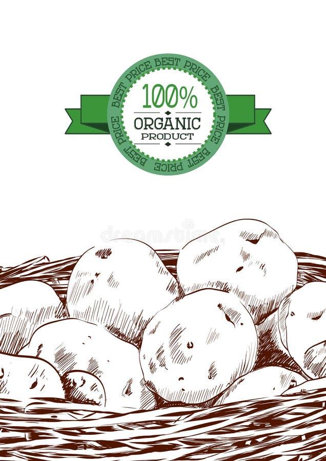 Вручите вычерченный эскиз картошек в корзине Иллюстрация вектора еды Eco винтажная иллюстрация штока