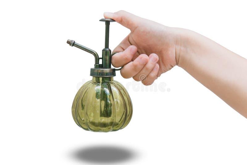 Вручите держателю винтажный спрейер завода и цветка стеклянная бутылка стоковое фото rf