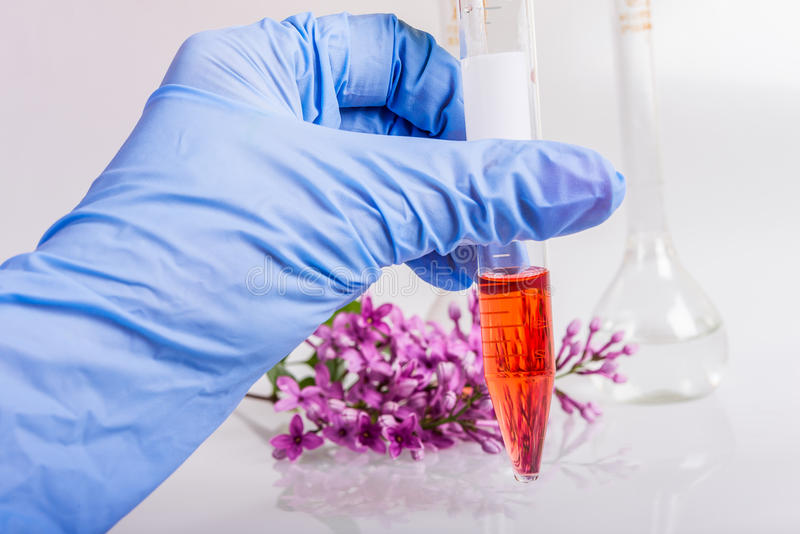 Вручите держать трубку с извлечением естественных ингридиентов в парфюмерии стоковое изображение rf