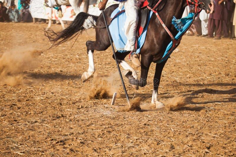 Всадник лошади, ехать в шатре прикрепляя событие стоковые изображения rf
