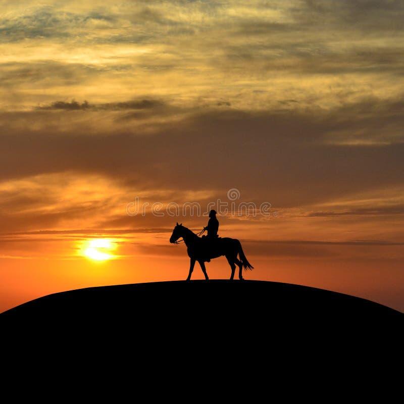 Всадник спины лошади на заходе солнца бесплатная иллюстрация