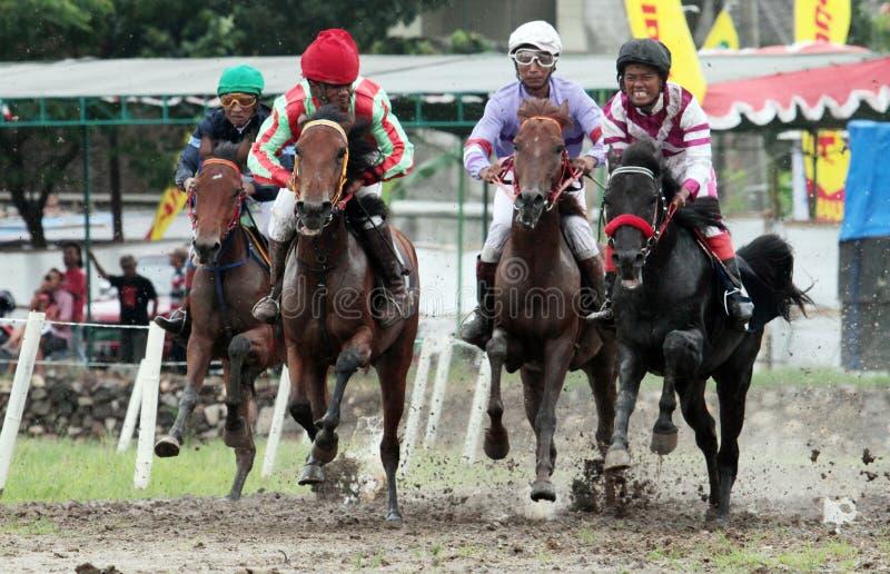 Всадник скаковой лошади вступил в противоречия скорость в традиционной лошади стоковое изображение