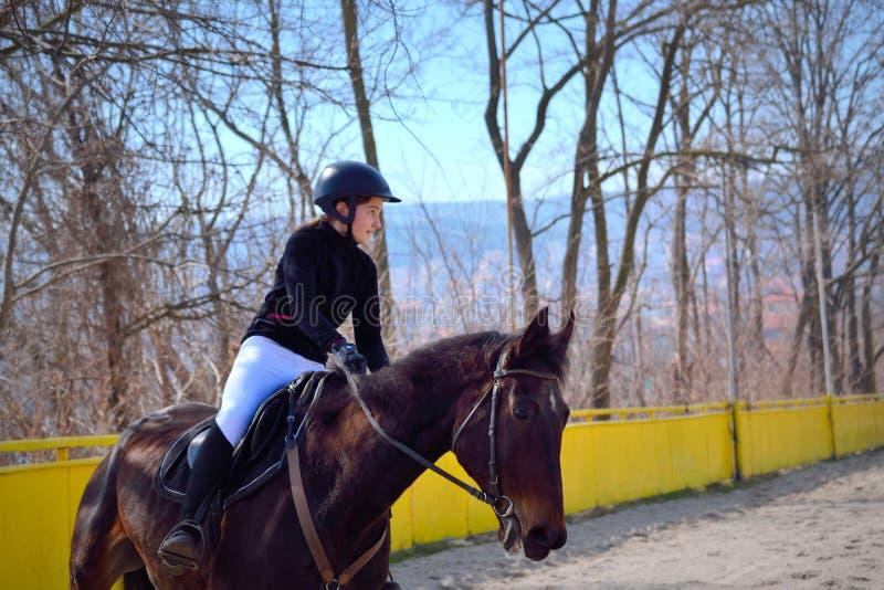 Всадник equestrian маленькой девочки стоковые фотографии rf