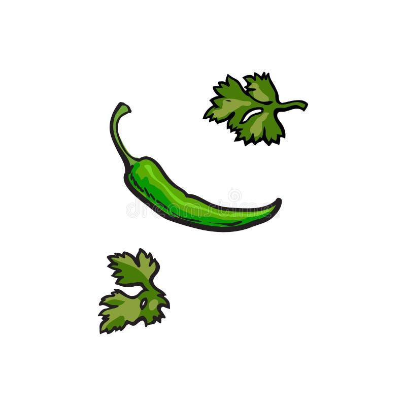 Все зрелые зеленые листья перца и петрушки chili бесплатная иллюстрация
