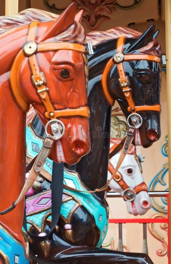 все лошади довольно стоковые фото