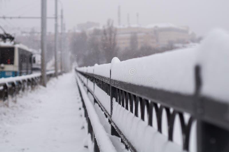 Все покрыто с снегом стоковые фотографии rf