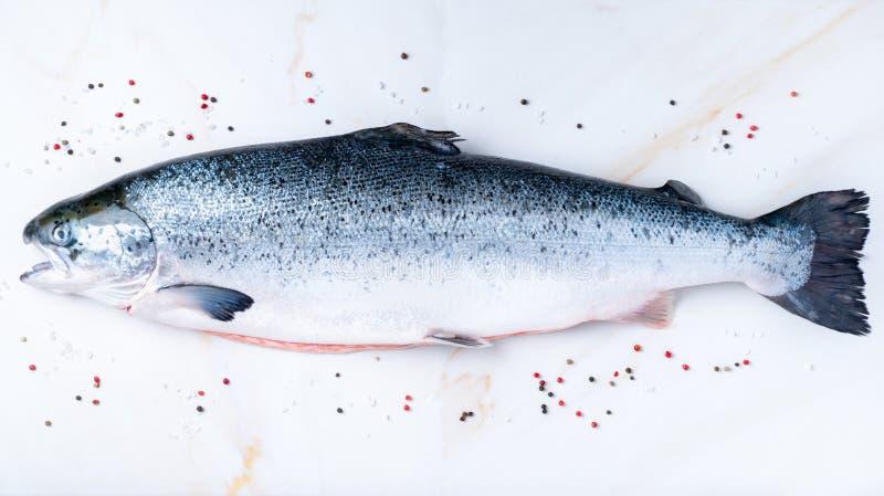 все свежие сырцовые большие рыбы семг с приправой, солью, перцем дальше стоковое фото