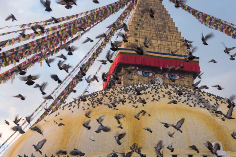 все boudhanath Будда eyes полусфера kathmandu Непал переднего плана гигантская золотистая видя белизну более малого stupa шпиля в стоковая фотография rf
