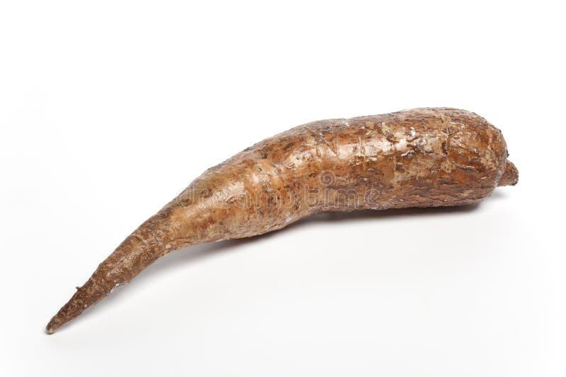 все cassave одного одиночное стоковые фото