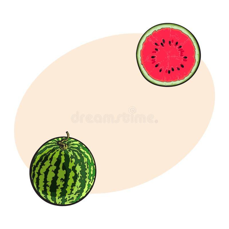 Все striped арбуз и отрезок в половине, иллюстрации эскиза бесплатная иллюстрация