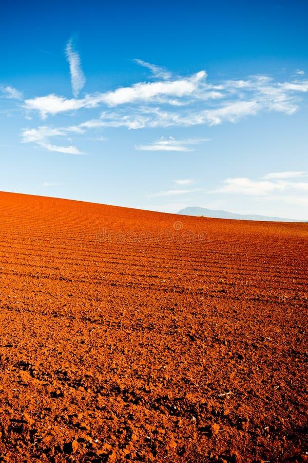 Вспаханная красная земля в солнце последнего вечера стоковое фото