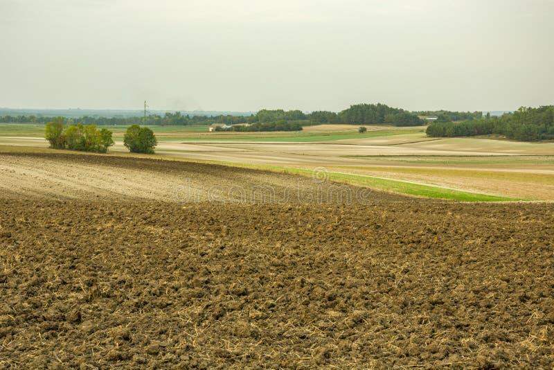 Вспаханное поле на холмах стоковые изображения rf