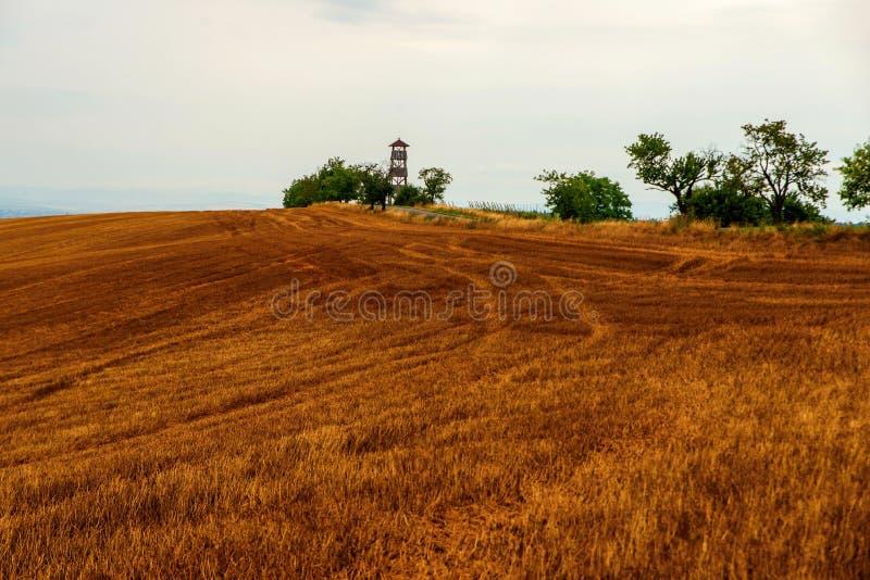 Вспаханное поле с башней и деревьями бдительности стоковые изображения