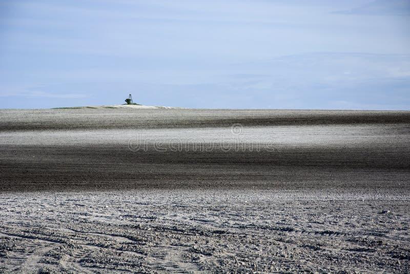 Вспаханное поле с рухляком, сиротливым деревом и голубым небом стоковые фотографии rf