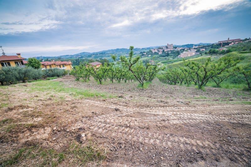 Вспаханное поле в сельской местности вокруг средневекового замка стоковая фотография rf