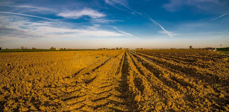 Вспаханное поле картошки после сбора стоковое изображение