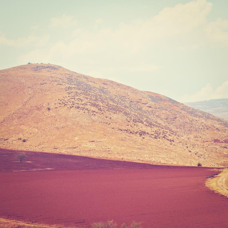 Download Вспаханное поле стоковое фото. изображение насчитывающей поле - 41657628