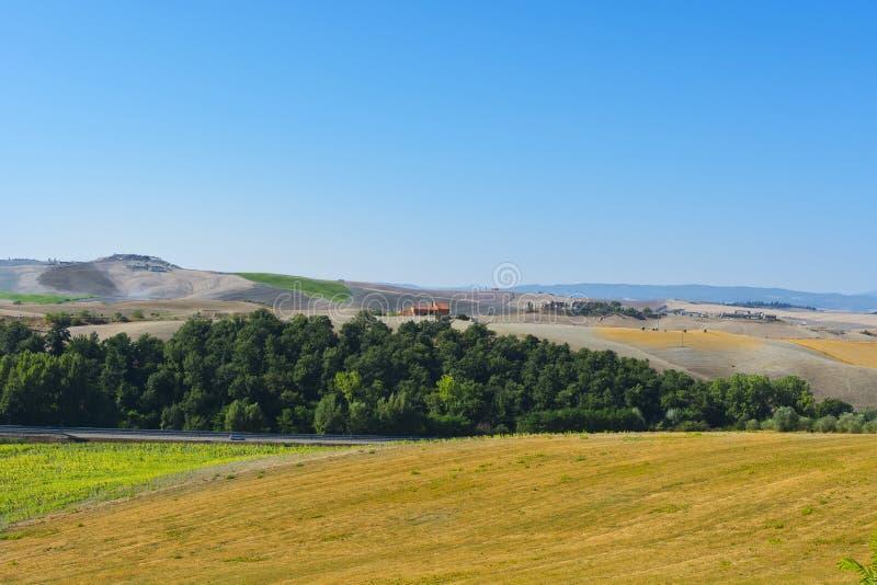 Вспаханные холмы Тосканы стоковая фотография