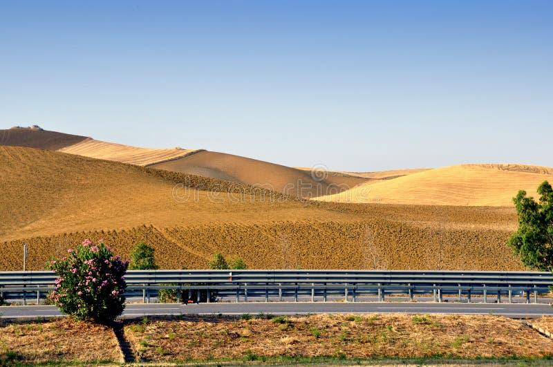 вспаханные холмы стоковое фото rf