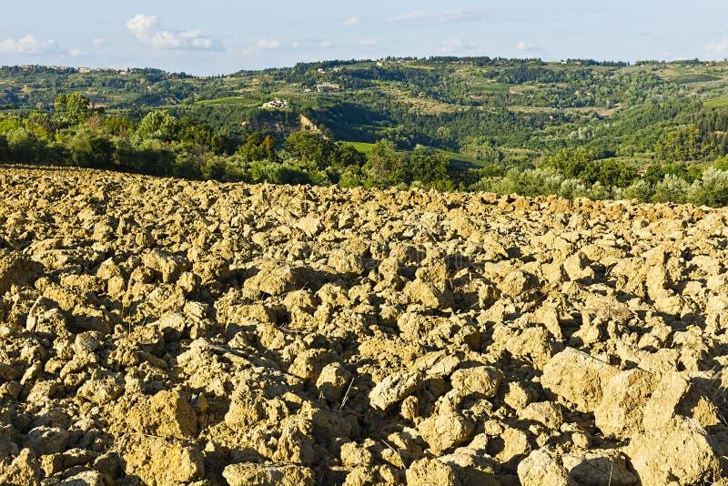 Вспаханные холмы Тосканы стоковое изображение rf
