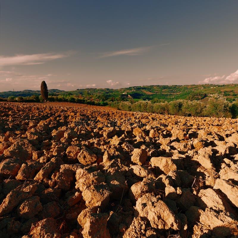 вспаханные холмы стоковое изображение