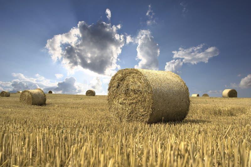 Вспышка облака над полем стоковое изображение rf