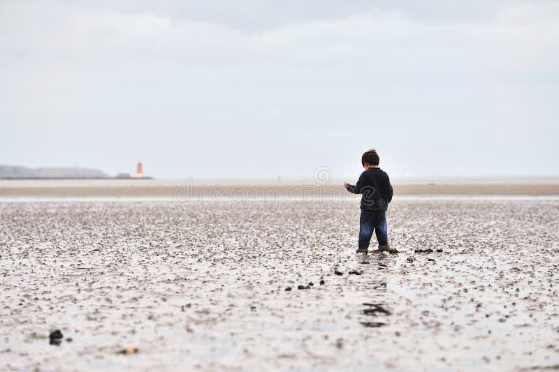 вставленная грязь стоковое фото rf