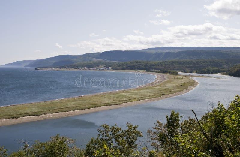 встречает реку океана стоковые фото