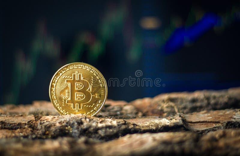 Встреча Bitcoin стоковая фотография rf