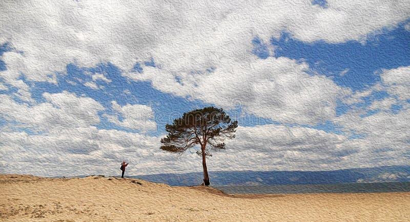 Всходы путешественника сиротливого дерева на заливе, Lake Baikal, России иллюстрация штока