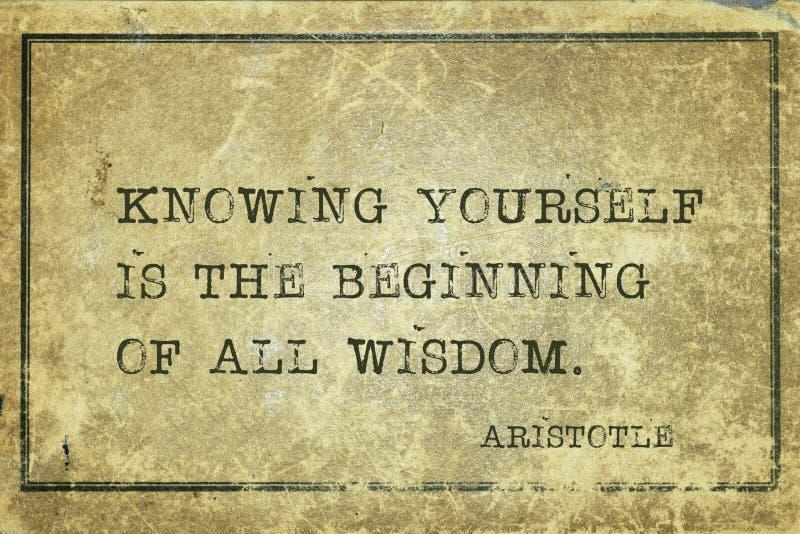 Вся премудрость Аристотель стоковое изображение rf