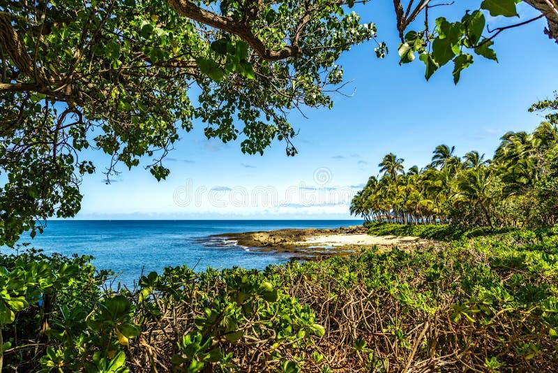 Втихомолку пляж стоковые фото