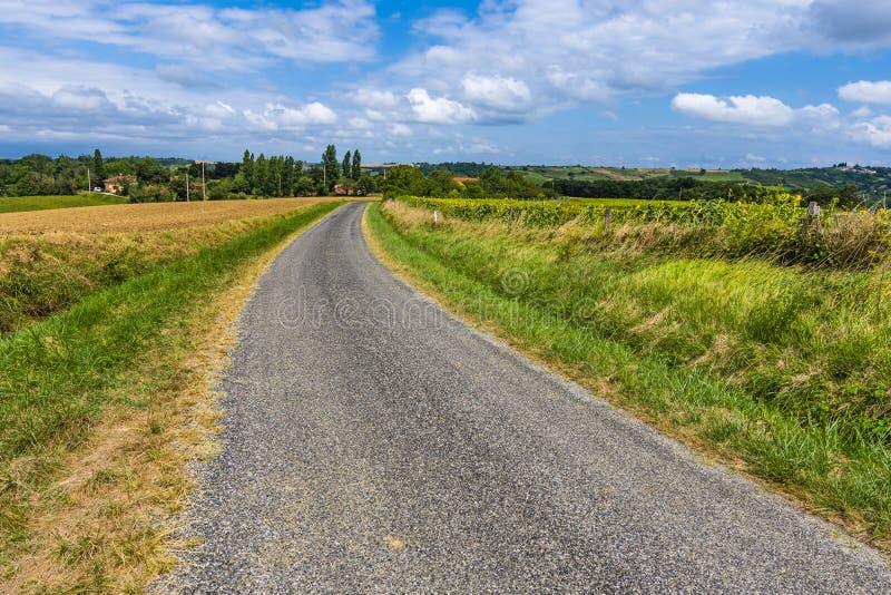Вторичная трасса в аграрной зоне Атлантические Пиренеи Франция стоковое фото rf