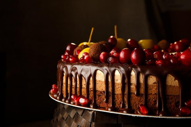 Втройне украшенный шоколадный торт с гранатовым деревом, клюквами и малыми яблоками стоковая фотография rf