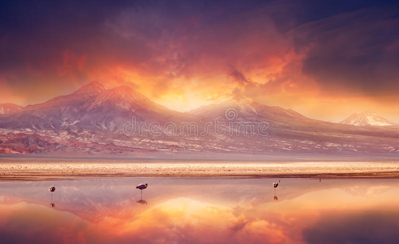 Вулканические флюиды стоковая фотография rf