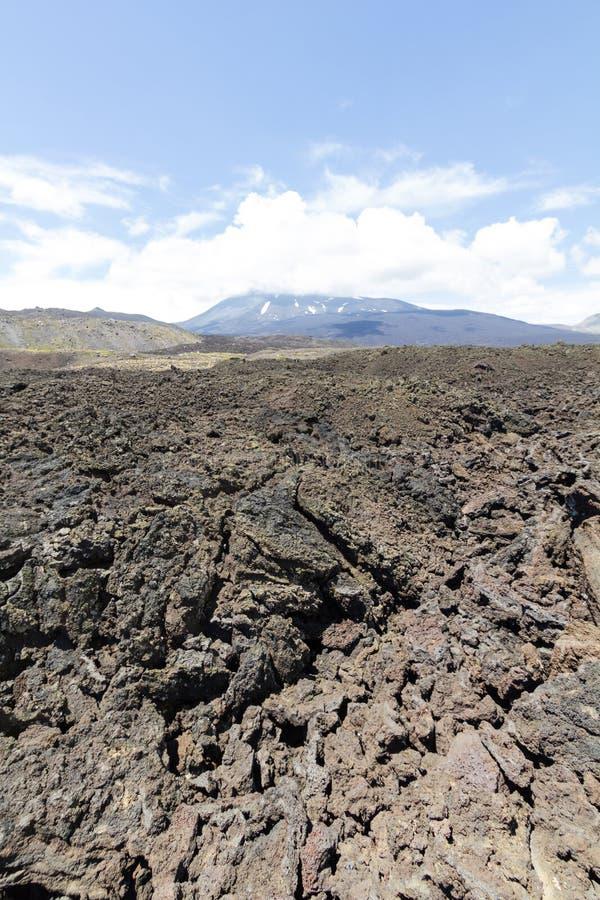 Вулканическое Сьерра Velluda, в национальном парке Laguna de Laja в био био зоне Чили стоковое фото
